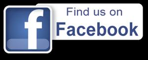 facebookB300